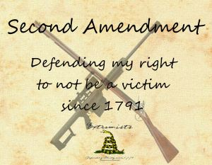 The true purpose of the 2nd Amendment.